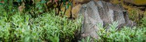 Lautsprecher für Garten und Terrasse in Steinoptik